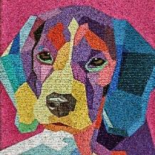 hond-kunst-huisdier